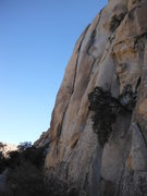 Rock Climbing Photo: Catapult on the left and Arms Control ascend split...
