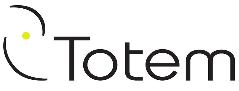 Rock Climbing Photo: Totem logo