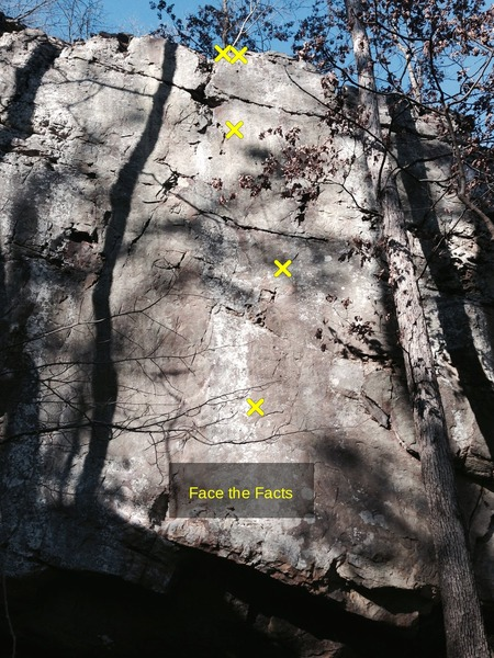 Rock Climbing Photo: The bolted line to the right is Face the Facts (11...