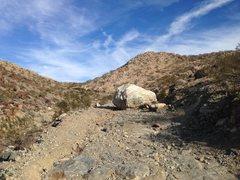 Rock Climbing Photo: End of the road - Black Eagle Mine Road, Joshua Tr...