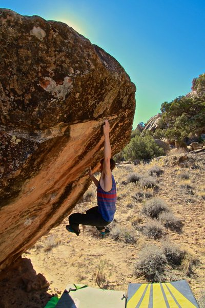 Rock Climbing Photo: Sticking the crimp up and left.  Photo by Liesel H...
