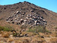 Rock Climbing Photo: The Cinema, Joshua Tree NP