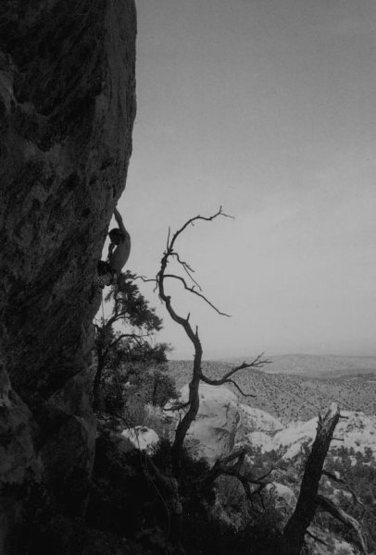 Rock Climbing Photo: Jan Hargett on Diminishing Returns (5.12a), Devil'...