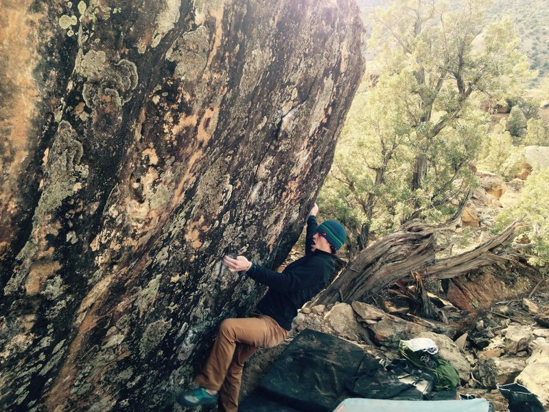 Rock Climbing Photo: Sean near the beginning of Cannibal Lola.