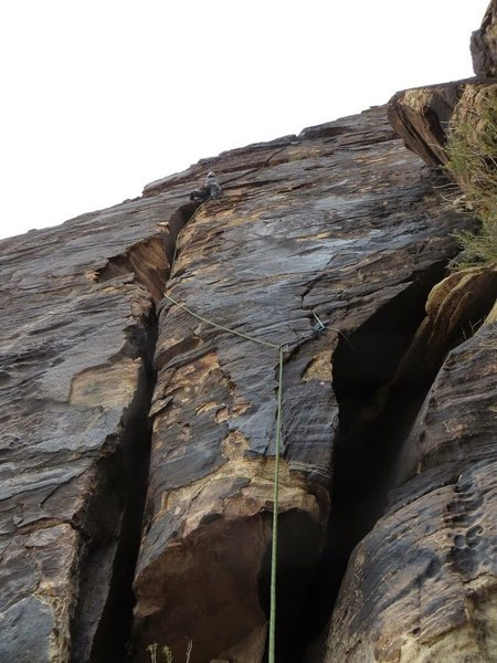 Rock Climbing Photo: The big horn slung for solid pro.