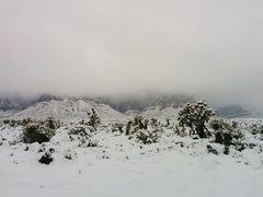 Rock Climbing Photo: Black Velvet Snow.