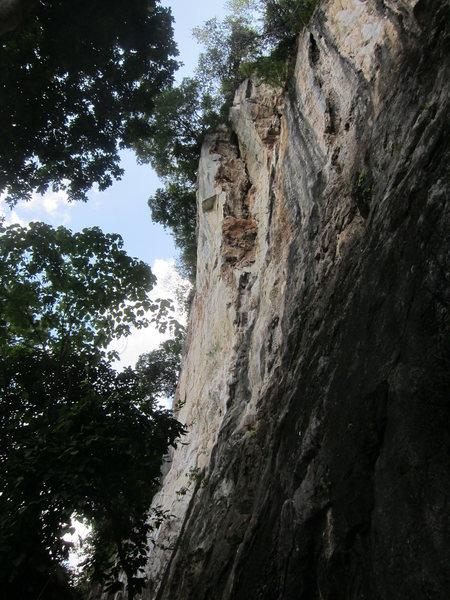 Rock Climbing Photo: Shelltox section (middle)