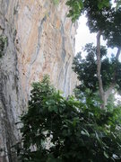 Rock Climbing Photo: Shelltox section (right)