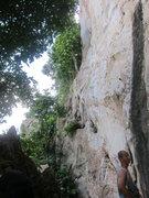 Rock Climbing Photo: Shelltox section (left)