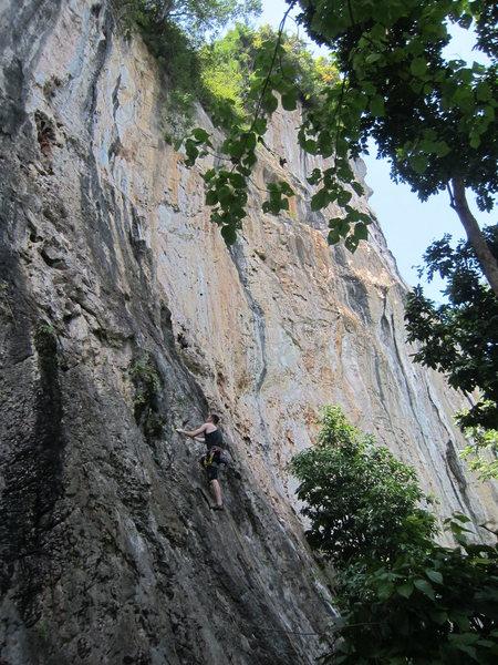 Rock Climbing Photo: Matty G getting some