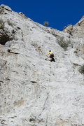 Rock Climbing Photo: great limestone