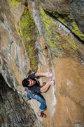 Rock Climbing Photo: Kyle Neely cruising on the 2nd ascent of The Barbo...