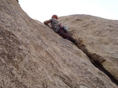 Rock Climbing Photo: Jtree