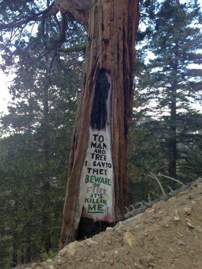 """""""Desert Steve"""" Ragsdale art (7S02), Santa Rosa Mountains"""