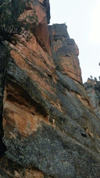 Rock Climbing Photo: Bear Fight from below. The splitter on P2 is viewa...