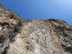 Rock Climbing Photo: Mia on Trio