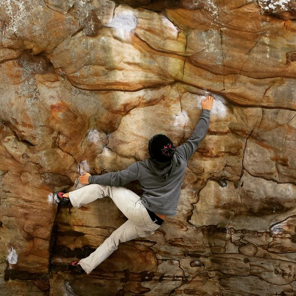 Rock Climbing Photo: Lab Rats