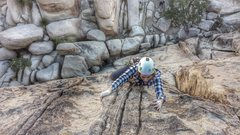 Rock Climbing Photo: Wife in joshua tree