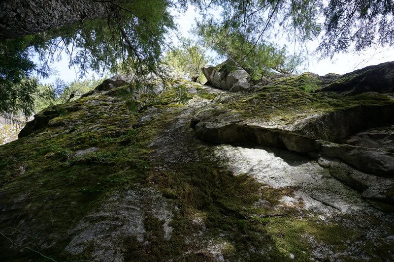 Rock Climbing Photo: Ultimatum unscrubbed 03/15