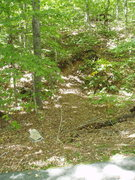 Rock Climbing Photo: The W-G DOWN trail at the intersection with the bi...