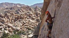 Rock Climbing Photo: Well that looks like a great place for gear...