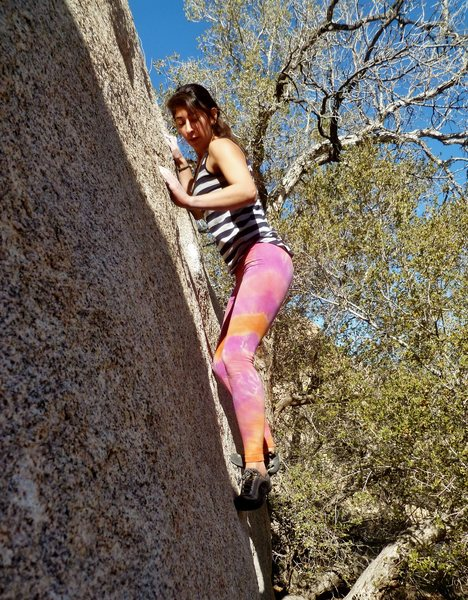 Rock Climbing Photo: Jackie Trejo