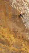 Rock Climbing Photo: Lucky Pigeon