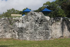 Rock Climbing Photo: Coral Corner tucked into the right side of this fo...