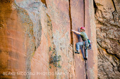 Rock Climbing Photo: Z.Harrison in some of the best rock and moves in t...