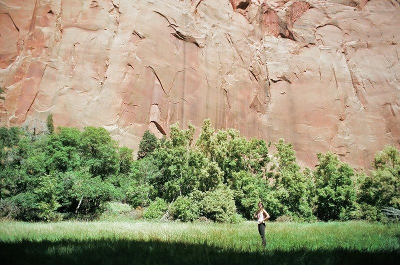 Rock Climbing Photo: Bailey Crawford in Kolob Meadow.