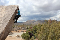 Rock Climbing Photo: Surfing the Arete on a windy J Tree day.