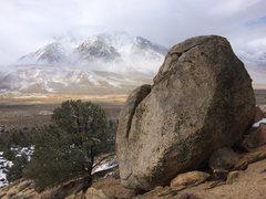 Rock Climbing Photo: bishop