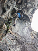 Rock Climbing Photo: Setting up for the crux...