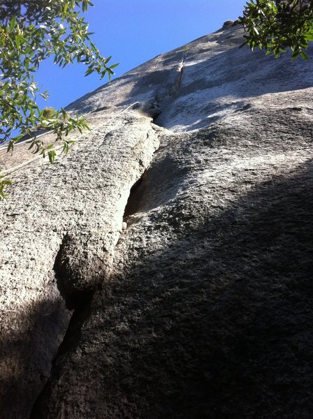 Rock Climbing Photo: Looking up Jammies in the morning light