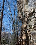Rock Climbing Photo: winter harvest