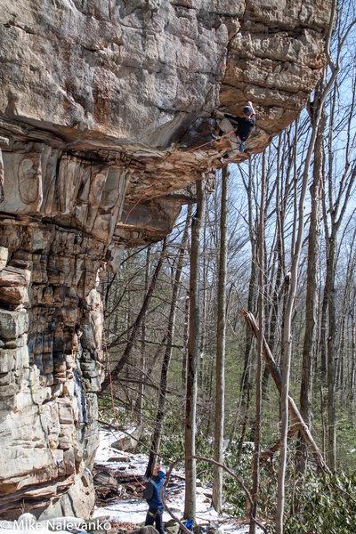 Rock Climbing Photo: austin past the crux