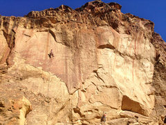 Rock Climbing Photo: Conrad and Brannon on the warmups: Dung Beetle on ...