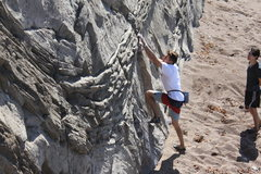 Rock Climbing Photo: the tiger stripes are easiest to start on