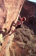 Rock Climbing Photo: Ted Thompson on Martini (5.13d), Leslie Gulch  Pho...