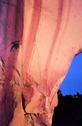 Rock Climbing Photo: Ted Thompson on the north face of The Asylum, Lesl...