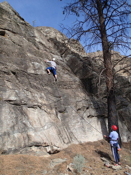 Climbers on Low Hanging Fruit