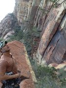 Rock Climbing Photo: Looking up at the massive head wall from the upper...
