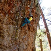 Rock Climbing Photo: Short and sweet. The route's pretty good too. Marc...