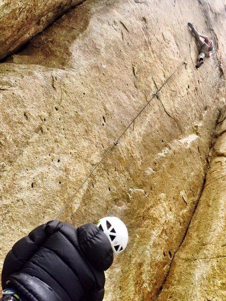 Rock Climbing Photo: Penguin Lust (photo by Nuno Montiero)