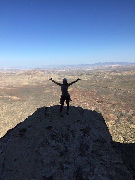 Rock Climbing Photo: Yay!