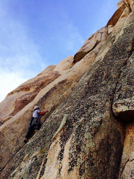 Rock Climbing Photo: Bernadette Regan leading the Greenhorn Dihedral 5....
