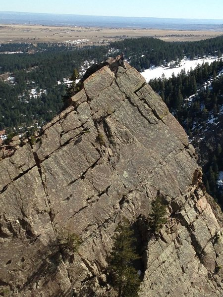 Rock Climbing Photo: Climber on the top of the Yellow Spur.
