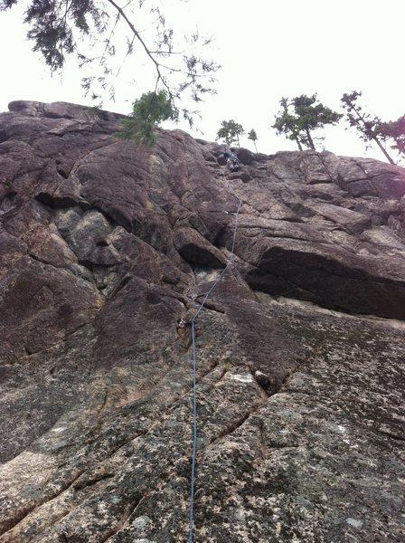 Rock Climbing Photo: The Nose