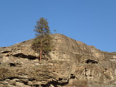 Rock Climbing Photo: Upper SW Face from the SW.
