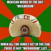 "Latin word for ""mushroom"""